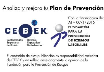 Analiza y mejora tu plan de prevención - Cebek - Fundación para la Prevención de Riesgos Laborales
