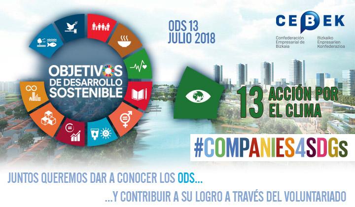 Companies4sdgs - Objetivos de desarrollo sostenible - Objetivo 5, Igualdad de género