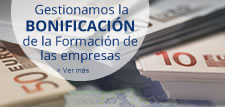 Bonificacion_pie_225x1071